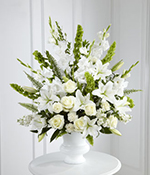 Morning Stars Arrangement